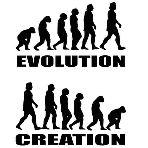 Evolution Creation illustrations by oldtee.com